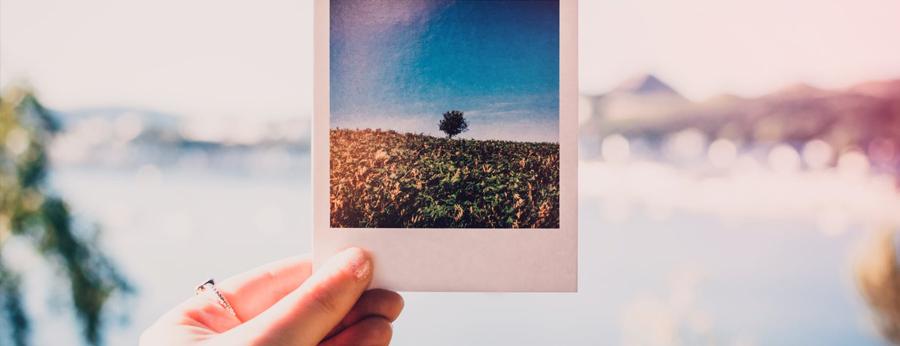 Polaroidbild - 5 grundlegende DIY Hochzeitsgästebuch-Ideen, um Ihren besonderen Tag besonders unvergesslich zu machen.